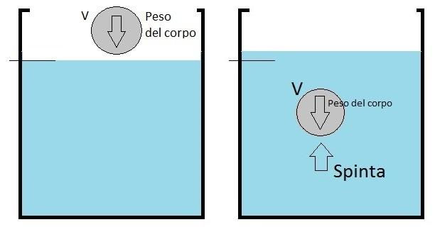 formula del peso in fisica